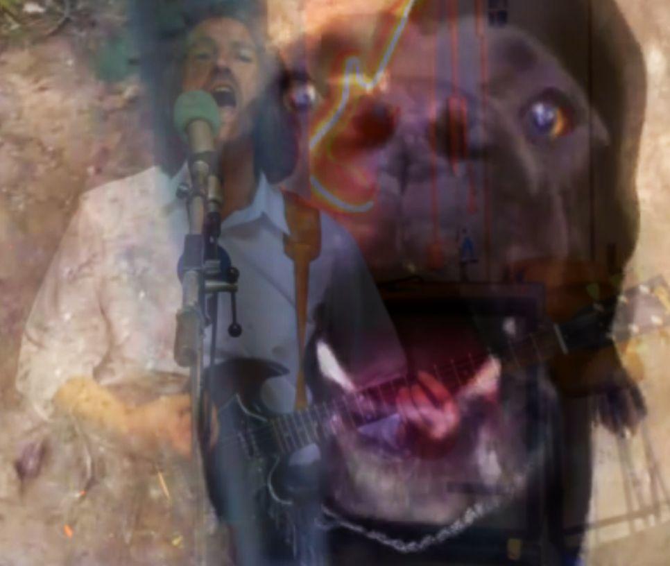 HundFred-Artikelbild-2